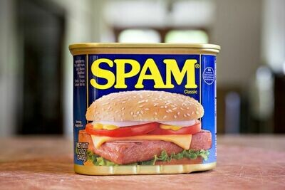 Spam Canned Meat 340g