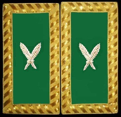 Embroidered Should Rank Secretary (Gold Bullion) Pair