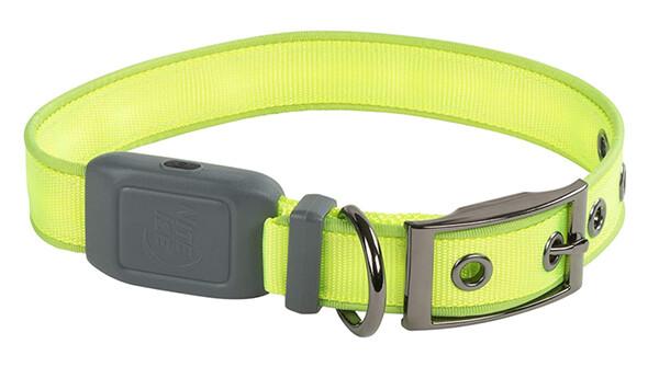 NiteDog™ Rechargeable LED Collar