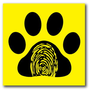 Reflective Patch: Paw Thumb
