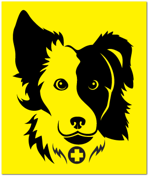 Reflective Patch: SAR K-9 Border Collie