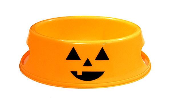 Halloween Dog Bowl