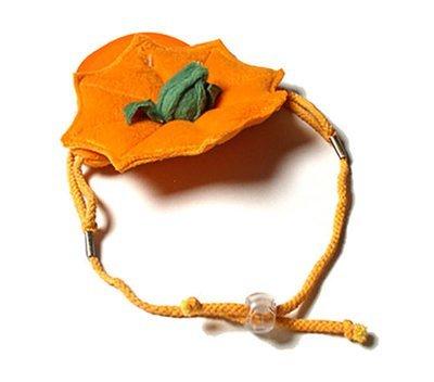 K-9 Hat: Pumpkin