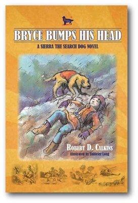 Bryce Bumps His Head (Book 4)