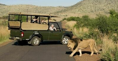 En-Suite Chalet in Kruger Park Safari | 5 Nights