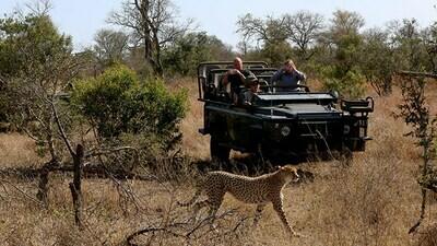 Kruger National Park Camping Safari (2 Nights)