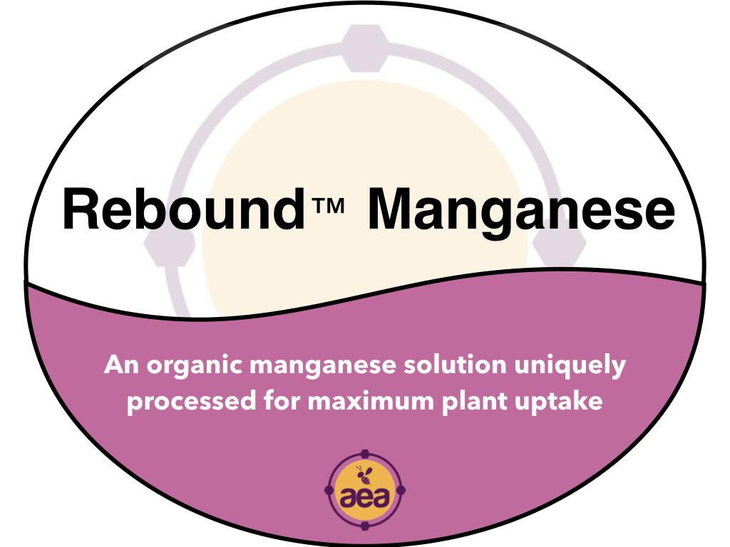 ReBound™ Manganese 275 gal
