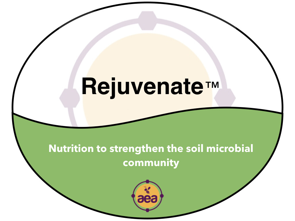 Rejuvenate™ 5 gal