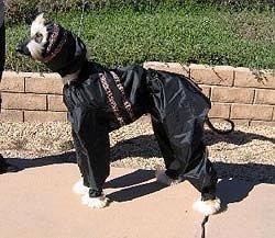 Dog-E-Raincoat and Snood