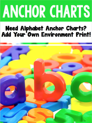 Phonics Anchor Charts - Add Your Own Environmental Print