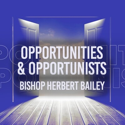 Opportunities and Opportunists