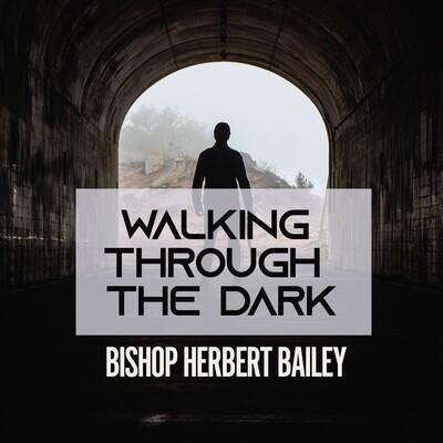 Walking Through The Dark