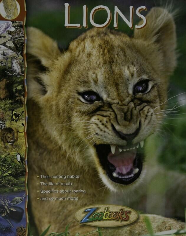 Zoo Books- Lions