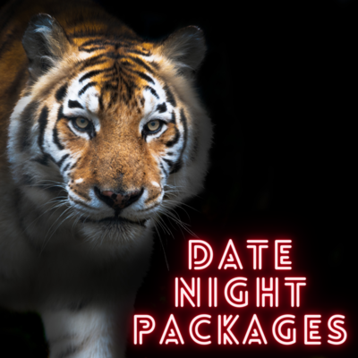 Valentines Date Night Packages