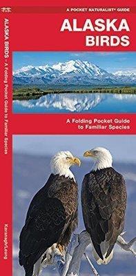 Pocket Naturalist: Alaska Birds
