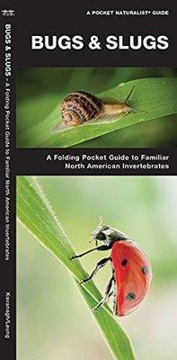 Pocket Naturalist: Bugs & Slugs