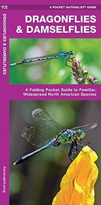 Pocket Naturalist: Dragonflies & Damselflies