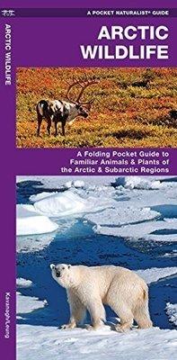 Pocket Naturalist: Arctic Wildlife