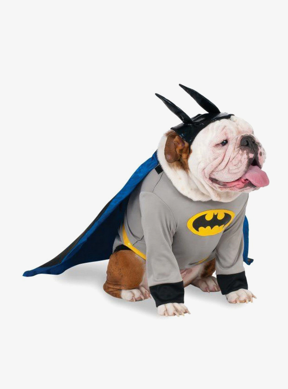 Cosplay Perrito Batman x2020