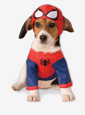 Cosplay Perrito SpiderMan