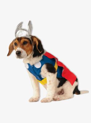 Cosplay Perrito Thor