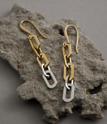 Danon Titanium Earrings