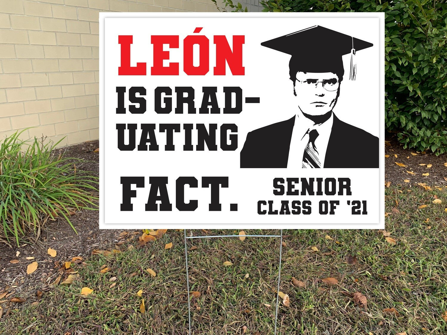 Support your Senior