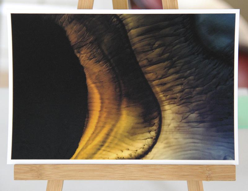 'Celle' Card | A5 print