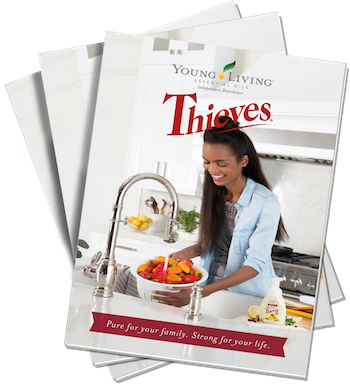 Thieves Brochure