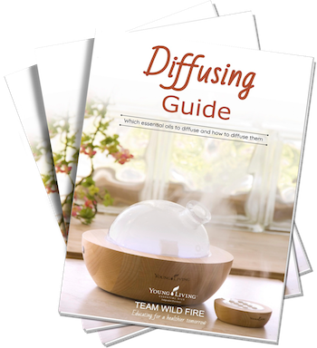 Diffusing Guide