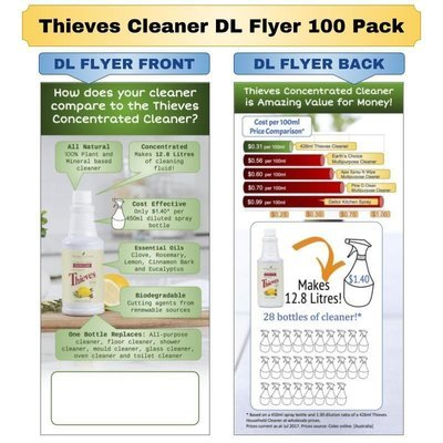 Thieves Cleaner DL Flyer 100 Pack