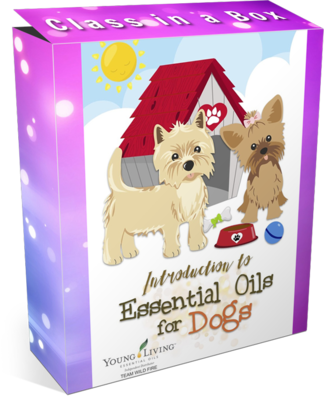Oils Discovery for Dogs Class in a Box