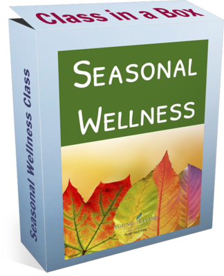 Seasonal Wellness Class in a Box