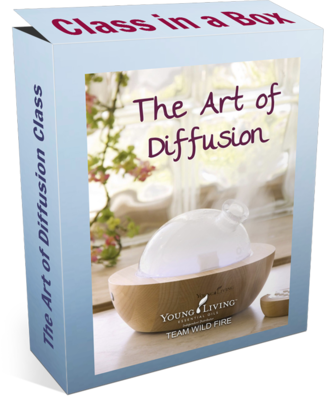 The Art of Diffusion Class in a Box