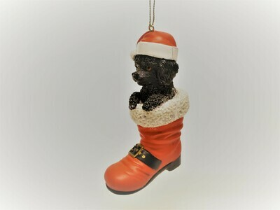 Black Poodle in a Boot