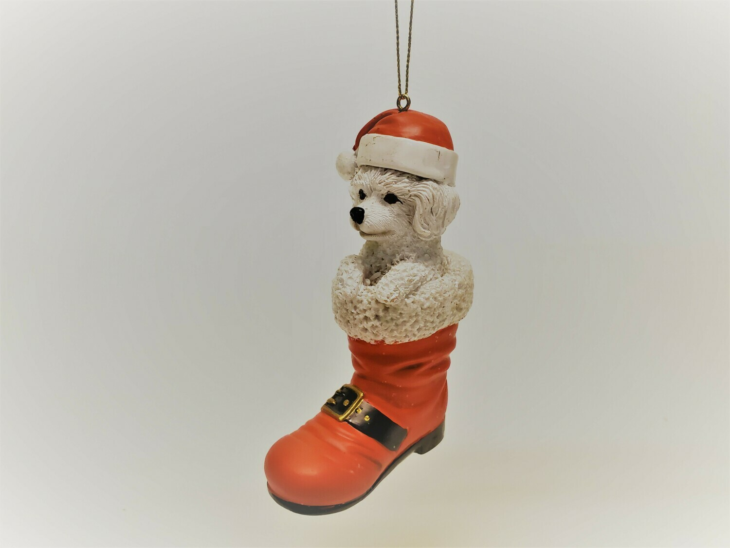 White Poodle in a Boot