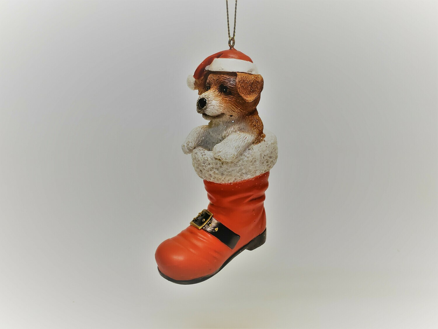 Jack Russell in a Boot