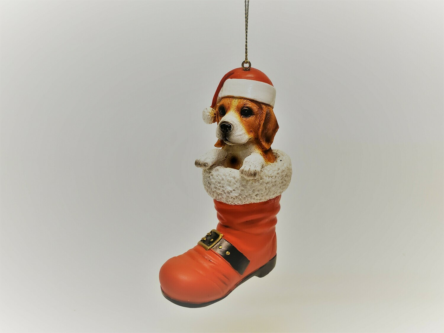 Beagle in a Boot