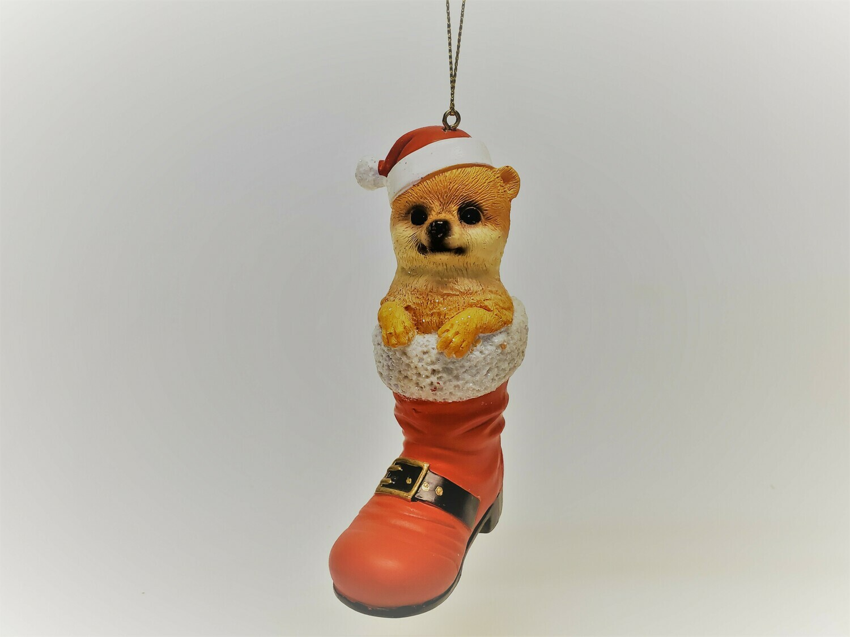 Pomeranian in a Boot