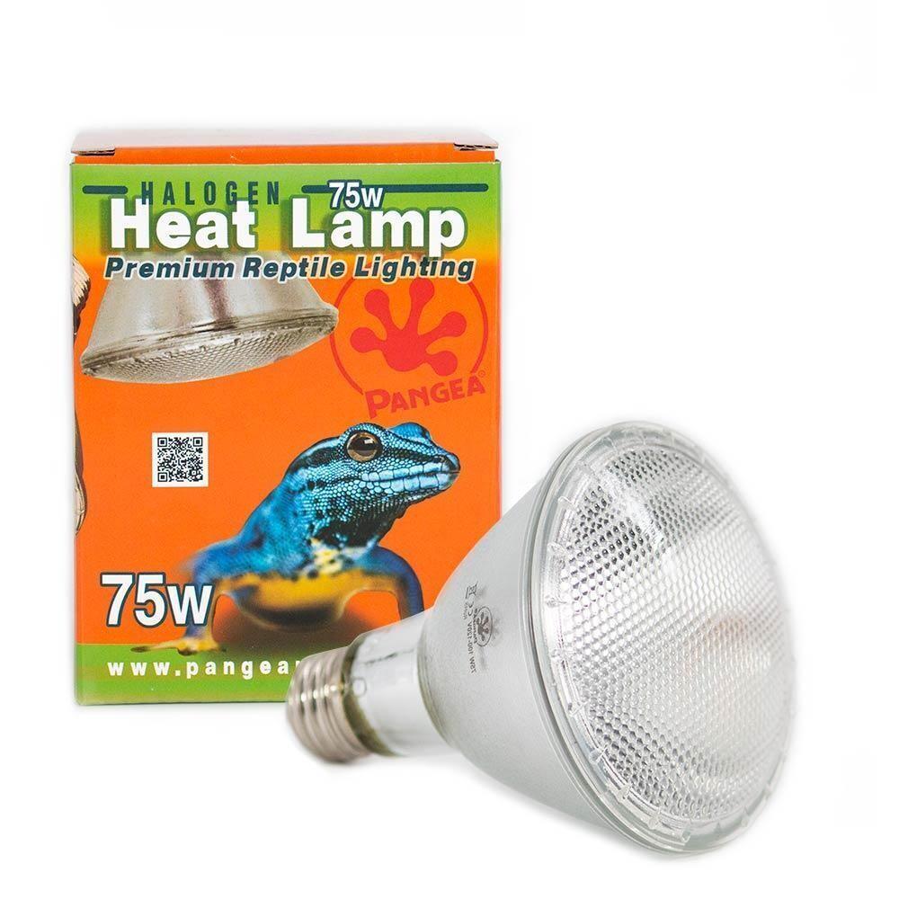 Pangea Reptile Halogen Heat Lamp Bulb [75 Watts]