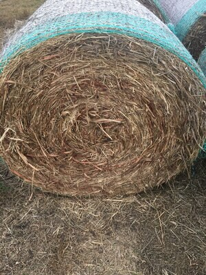 Pasture and Grain Sorghum bales 4x4