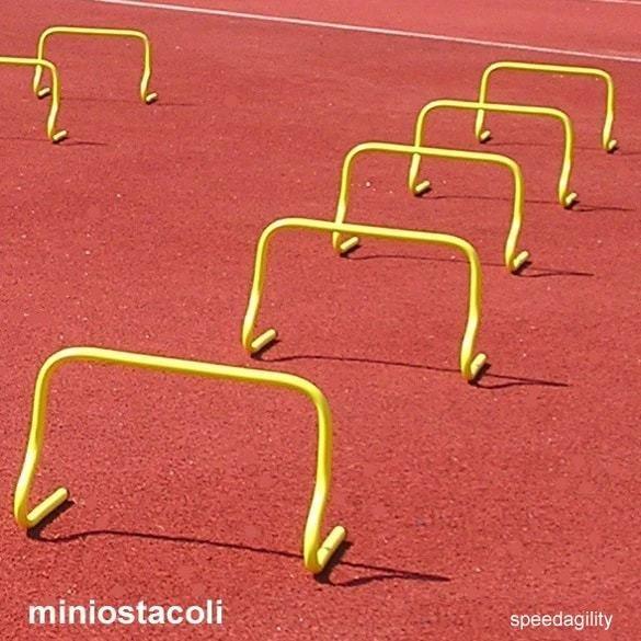Miniostacoli-Agility