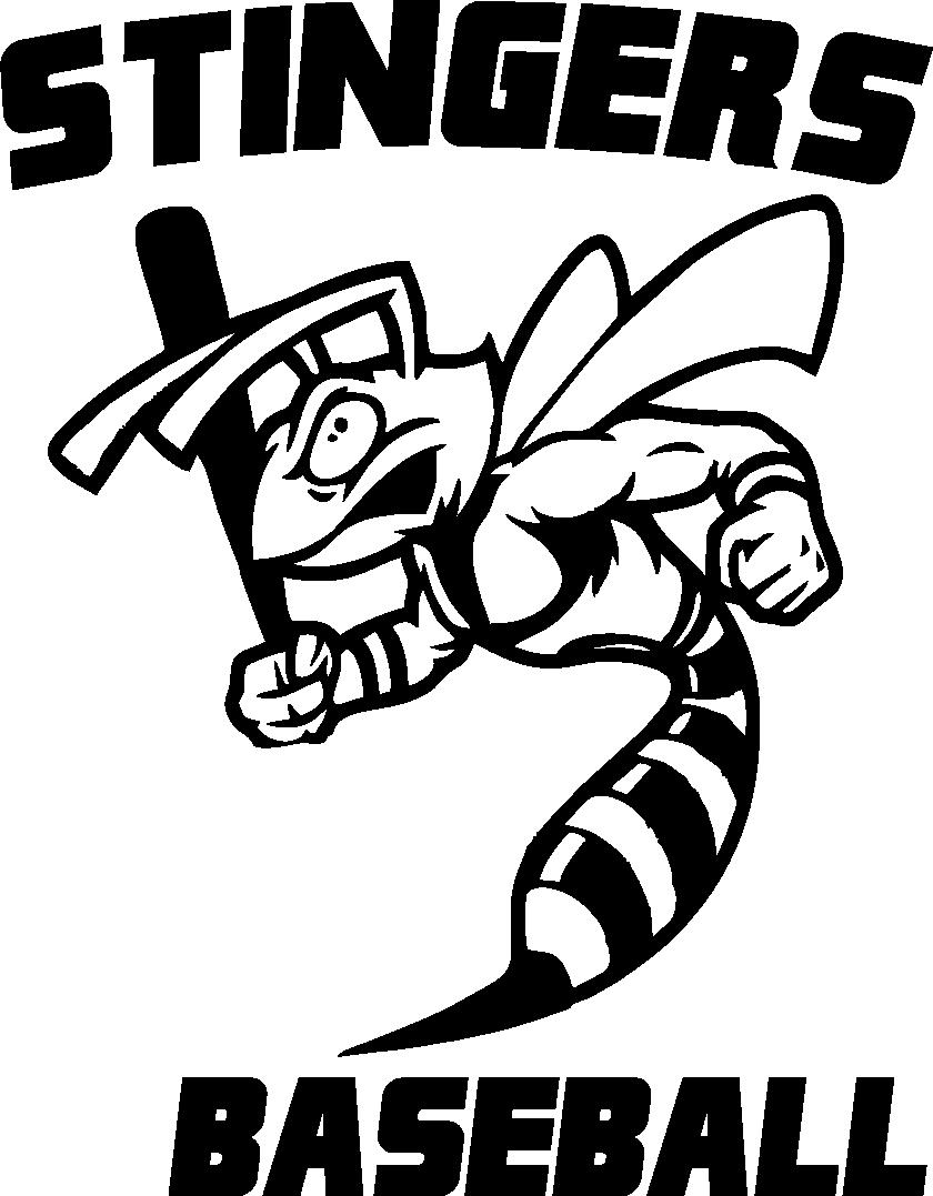 "Carolina Stingers 4.5""  Window Decal - Customization with Player Number (Optional)"