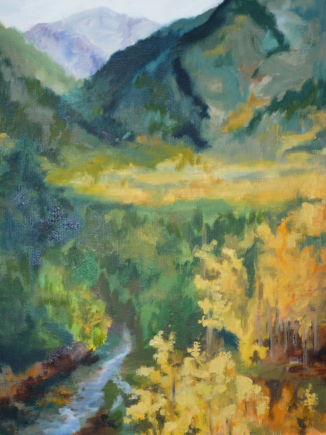 Colorado Color, Oil, 11x14