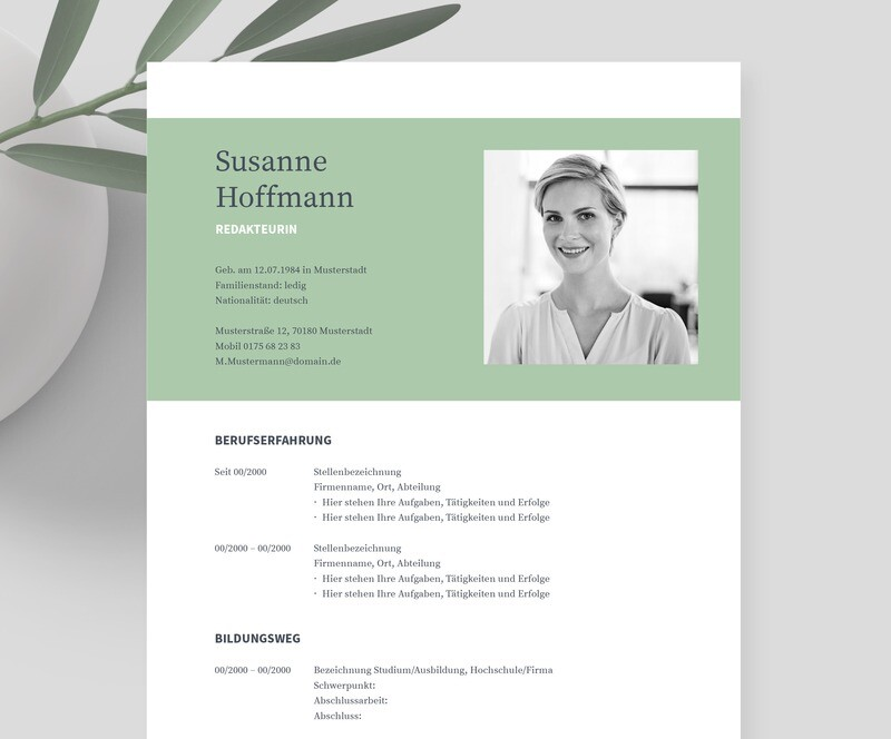 Bewerbungsvorlage »NAPEA green« inklusive eBook und Videoanleitungen   Für Word, Pages, OpenOffice und LibreOffice