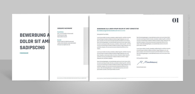Bewerbungsvorlage Novus Quer inklusive Anleitungen (für Word, OpenOffice und Google Docs)