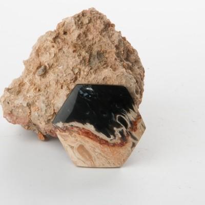 Black Palm Root Cabochon