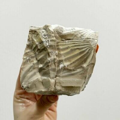 Polish Flint Rough – 2.09 pound piece