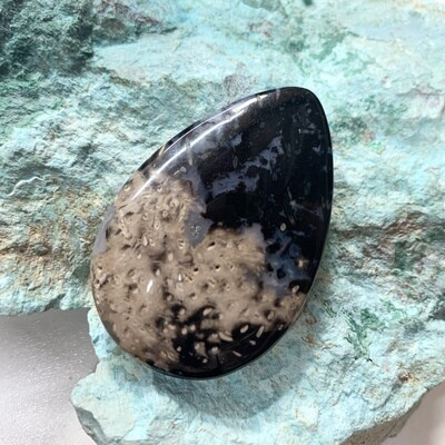 Black Palm Root Cabochon