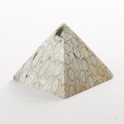 Fossilized Coral Pyramid
